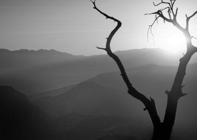 Schwarz-Weiß-Verarbeitung von Landschaftsaufnahmen mit Silver Efex Pro (auf Englisch)