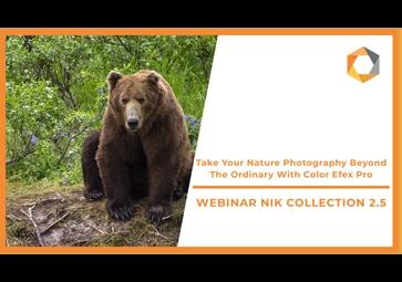 Mehr als gewöhnliche Naturaufnahmen mit Color Efex Pro (in Englisch)