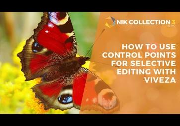 Verwenden von Kontrollpunkten für die selektive Bearbeitung mit Viveza (in Englisch)