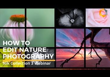 3verschiedene Workflows für kreative Naturfotografie mit der Nik Collection By DxO (in Englisch)